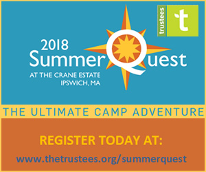 Day camp at the Trustees of Reservations Crane Estate in Ipswich, Massachusetts