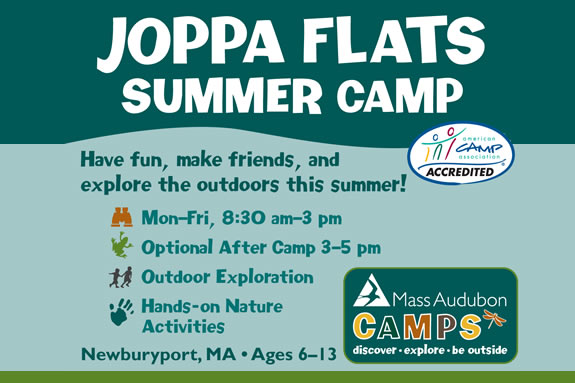 Summer Programs at Joppa Flats are designed to engage kids aged 6-12  in nature and to explore the world around them.