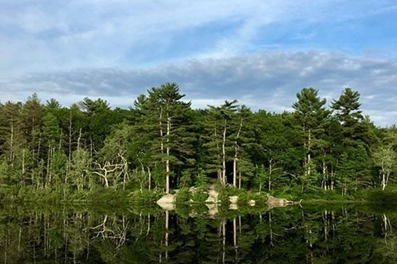 Harold Parker State Forest Massachusetts DCR