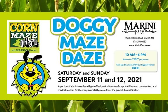 Marini Farm in Ipswich is teaming up with the Ipswich Humane Group to host a Doggy Maze Daze Fundraiser.