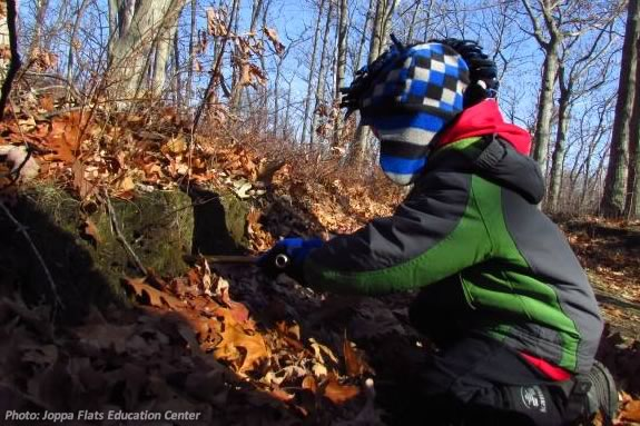 Kids will explore Mosely Woods Park with Joppa Flats Education Center in Newburyport!