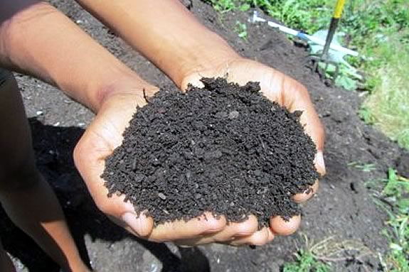 Kids will learn about composting at the Trustees of Reservations' Stevens-Coolidge Estate in North Andover