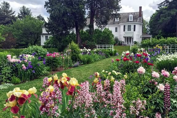 Come enjoy the fantastic flower display in the gardens at the Trustees of Reservations Stevens-Coolidge Place in North Andover!