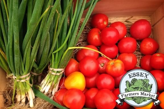 Essex Farmers Market every Saturday in Season 10am-1pm. Essex MA, Featuring seas
