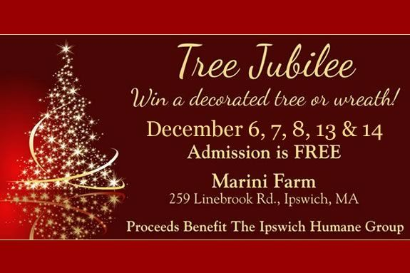 The Tree Jubilee hosted by Marini Farm is a fun and unique charity event!!