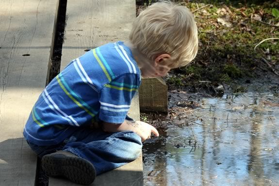 Ponds and puddles offer endless hours of exploration and discovery.
