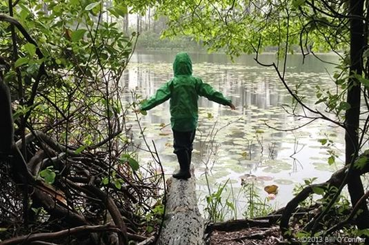 Have an adventure at Ipswich River Wildlife Sancatuary!