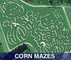 Check out North Shore Kid's great selection of places to get lost in a corn maze north of Boston. Massachsuetts North Shore Corn Mazes