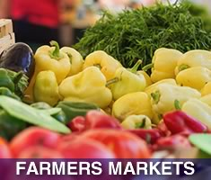 Check out North Shore Kid's complete list of Farmers Markets North of Boston on Massachusetts' North Shore Beaches!