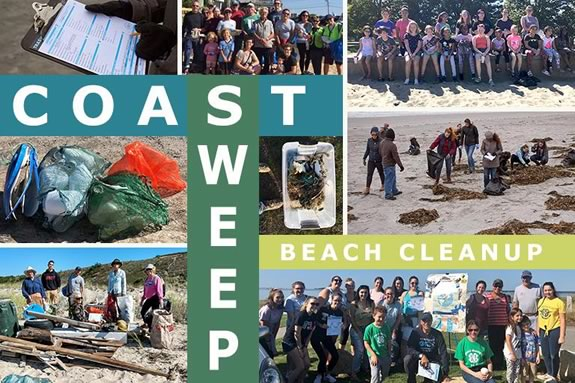 CoastSweep encourages families to volunteer and help preserve some of the nicest coastal properties on the planet!