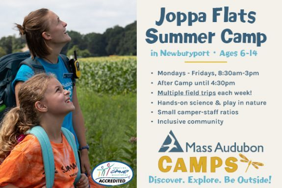 Summer Programs at Joppa Flats are designed to engage kids aged 6-14  in nature and to explore the world around them.
