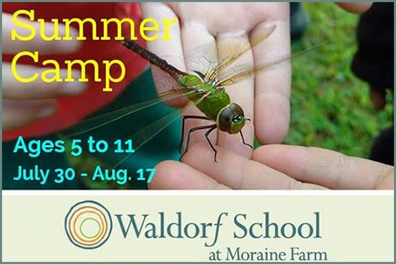 Register Today  for Summer Camp at Waldorf School at Moraine Farm in Beverly MA