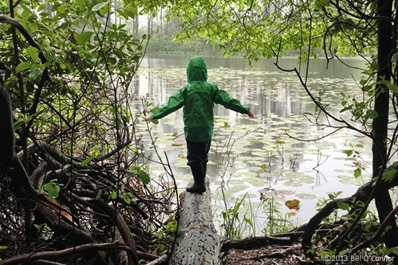 Kids will learn about nature through story, music and art at Ipswich River Wildlife Sanctuary.