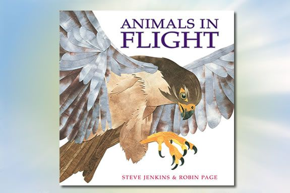Animals in Flight by Steve Jenkins and Robin Page is today's Nature Tale at IRWS