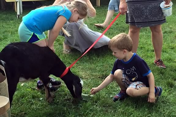 Befriend the Barnyard is a great chance to get close to our Appleton Farms stars in a relaxed and educational setting.