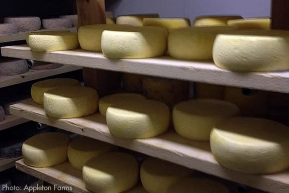 Families will learn to make farm fresh cheeses at Appleton Farms in Ipswich, MA