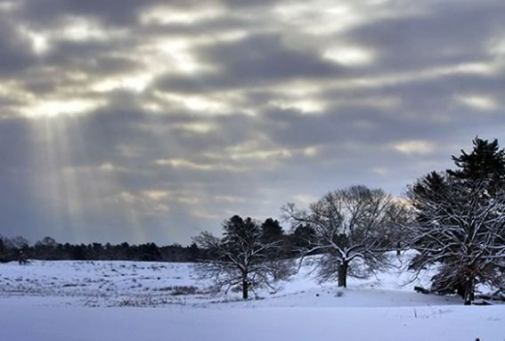 Join the Trustees for a snowy exploration of Appleton Farms in Ipswich Massachusetts on snowshoes.