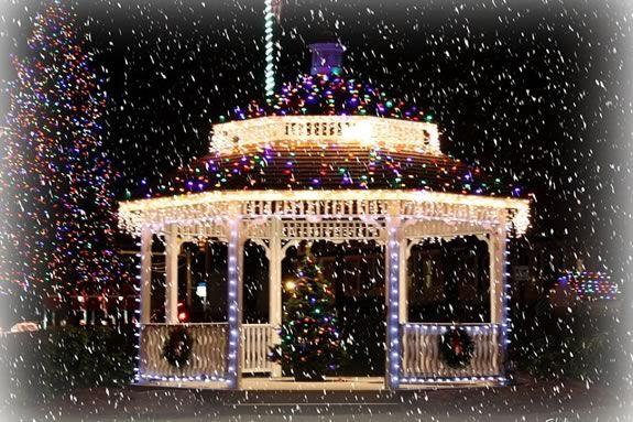 Beverly Massachusetts holiday tree lighting on the common.