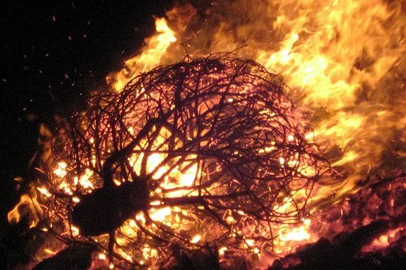 Come to Dead Horse Beach in Salem for the annual Christmas Tree bonfire!