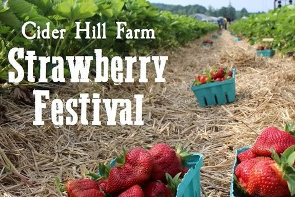 Strawberry Festival at Cider Hill farm in Amesbury Massachusetts