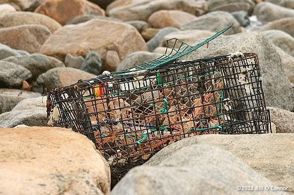 Some coastal trash is accidental like this lobster pot washed up by a storm. CoastSweep Cleanup Rockort Massachusetts