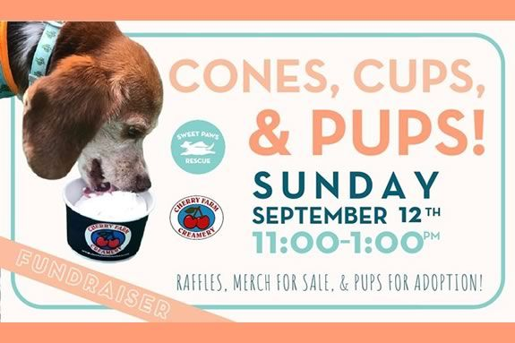 Cherry Farm Creamery in Danvers hosts a fundraiser for Sweet Paws Rescue