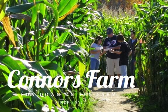Corn MAiZE, Maze and Haunted Attractions at Connors Farm - Danvers, Danvers MassachusettsDanvers Massachusetts