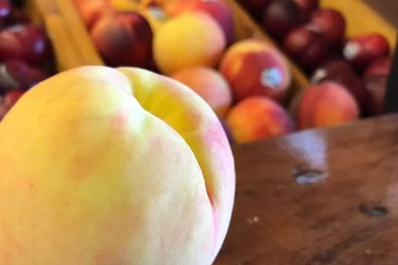 Come join the fun at Connors Farm in Danvers for their peach festival in August!