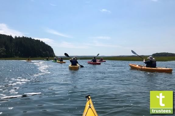 Take a guided kayak paddle adventure on the Castle Neck River with the Trustees of Reservations!