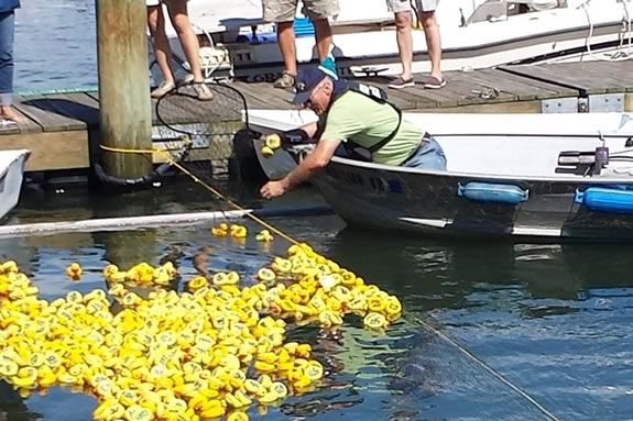 """The Danvers Kiwanis Annual """"Rubber Duck Race"""" raises money for scholarship funds for local college students"""