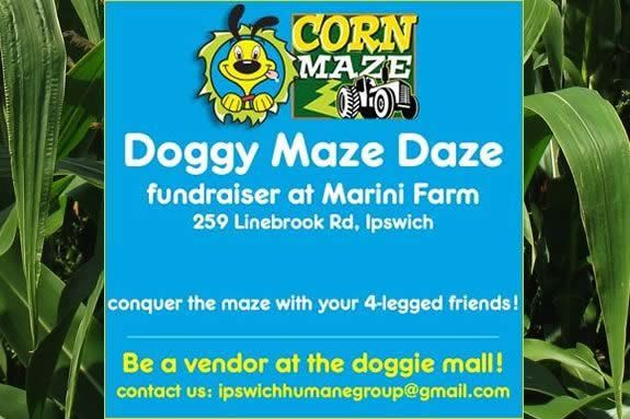 Marini Farm hosts Doggie Maze Days as a fundraiser for the Ipswich Humane Society! Come bring your pet to the corn maze and get lost with other pet owners!