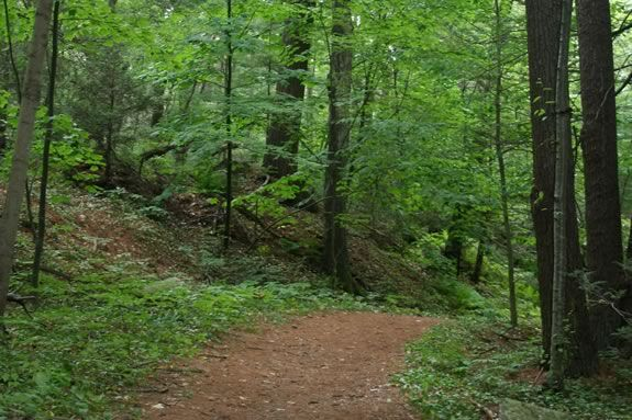 """Learn about the area once called the """"witches' woods"""" while enjoying the new greenery in Beverly Massachsuetts."""