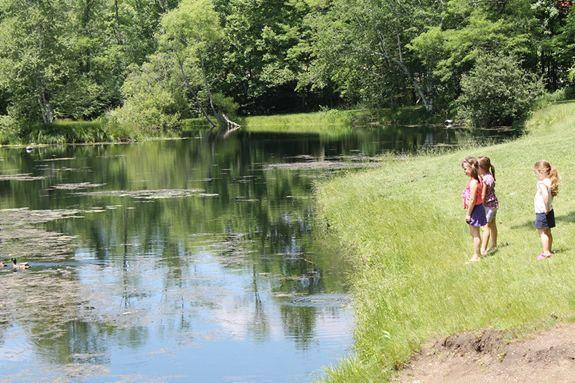 Endicott Park Family Fishing Festival, Danvers