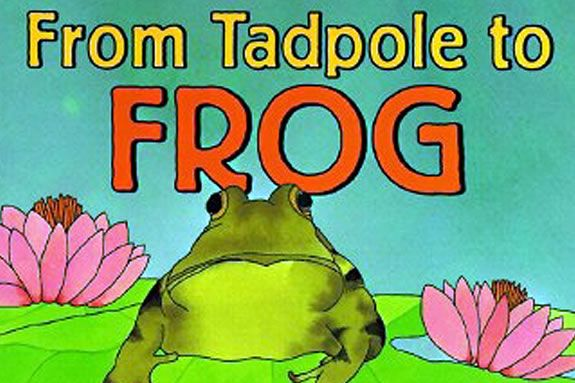'From Tadpole to Frog' by Wendy Pfeffer tells the story of a frog's life cycle.