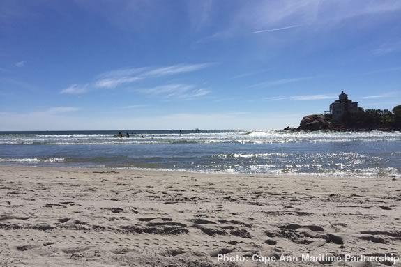 Annual Good Harbor Beach Fall cleanup