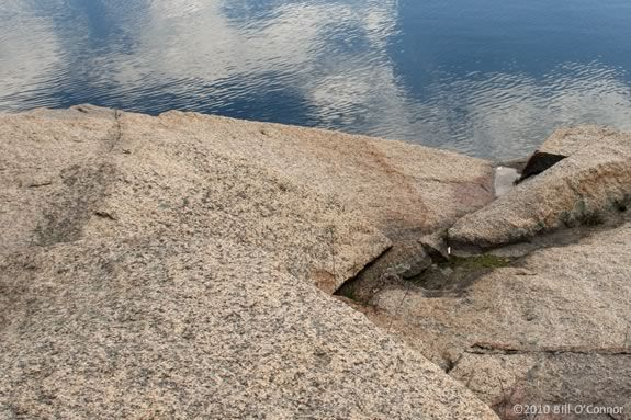 Find out the story behind the granite at Halibut Point State Park in Rockport!