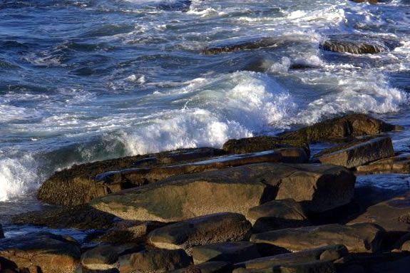 Hike the Atlantic Path from Halibut Point State Park to the Emerson Inn in Rockport Massachusetts!