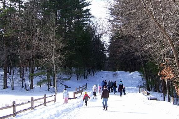 Walk the trails in a group at Harold Parker State Forest Every Wednesday at 10am