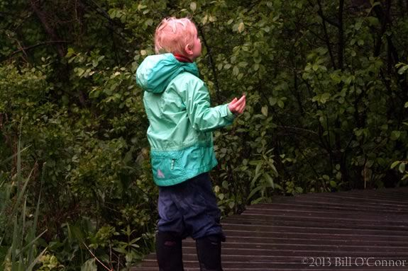 Enjoy this sensory walk on the trails of Ipswich River Wildlife Sanctuary with your children!