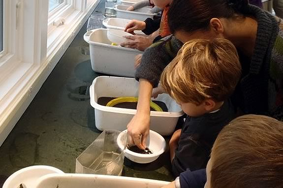 Preschoolers will learn about the creatures of the beach at Joppa Flats Center