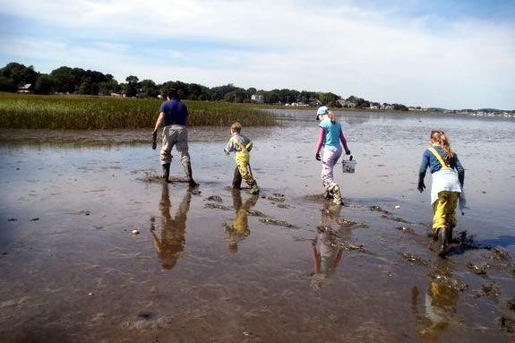 Explore the transitional zone of the Joppa Mud Flats in Newburyport