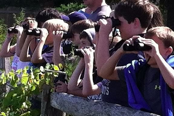 Kids and adults will learn about the diversity of Plum Island and the North Shore wildlife at Mass Audubon's Joppa Flats Education Center in Newburyport!