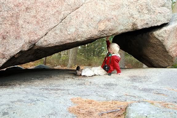 Explore the Trustees Agassiz Rocks Reservation on a new Quest Fest