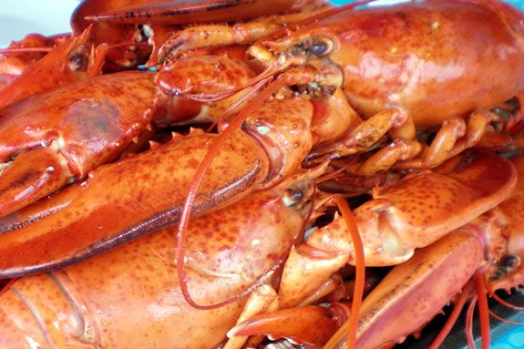 Enjoy lLobster on the wharf at Maritime Gloucester duirng the Schooner Festival!