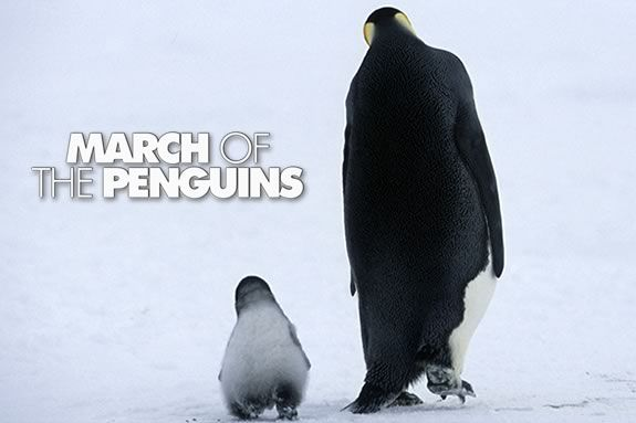 Watch March of the Penguins at the Parker River Wildlife Refuge in Newburyport