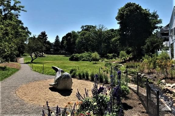 Grand Reopening of Millbrook Meadow in Rockport Massachusetts!