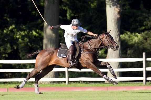 Myopia Polo match and picnic as part of trails and sails!