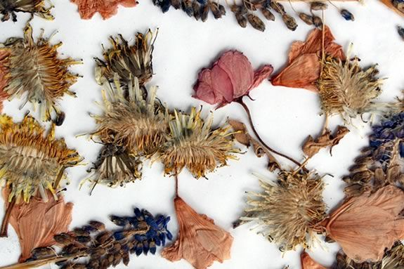 A dried flower collage is a great gift and is pleasantly green and sustainable