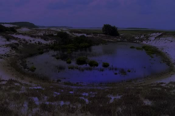 Enjoy a night hike at the Crane Estate to celebrate the end of March!