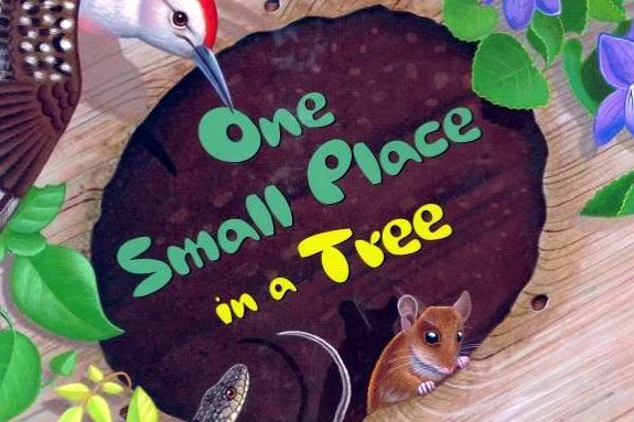 Join DCR's Autumn Feature StoryWalk® at Maudslay State Park, featuring One Small Place in a Tree, written by Barbara Brenner and illustrated by Tom Leonard